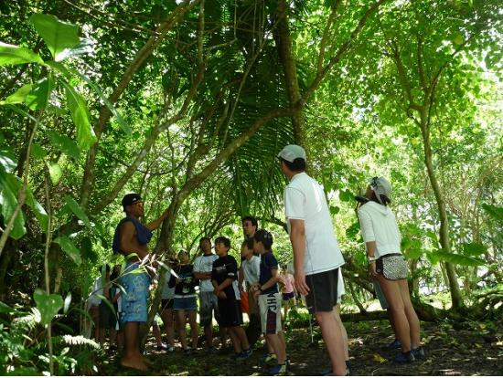 自然や遺跡探訪にはもってこいのツアー
