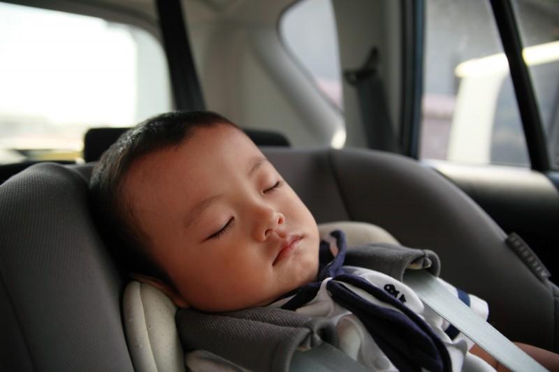 よく眠っているときは起こすのが忍びないものですが・・・。