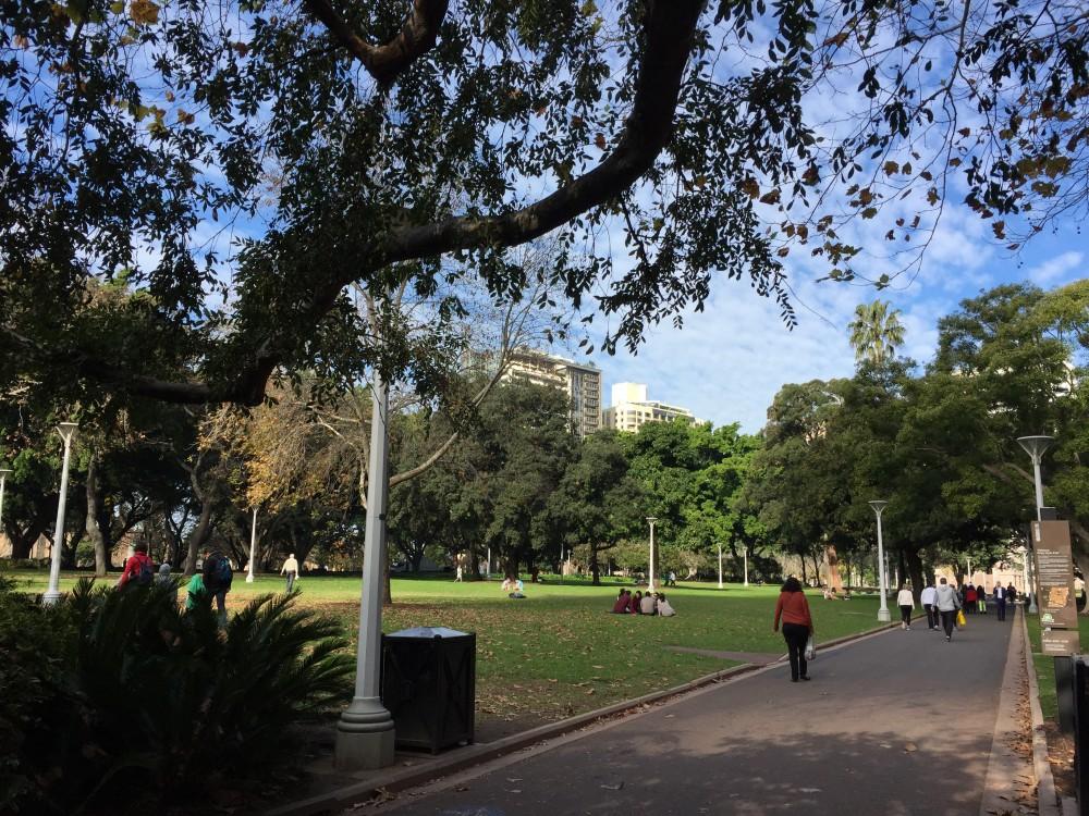 シドニー中心部のハイドパーク。市民の憩いの場です。