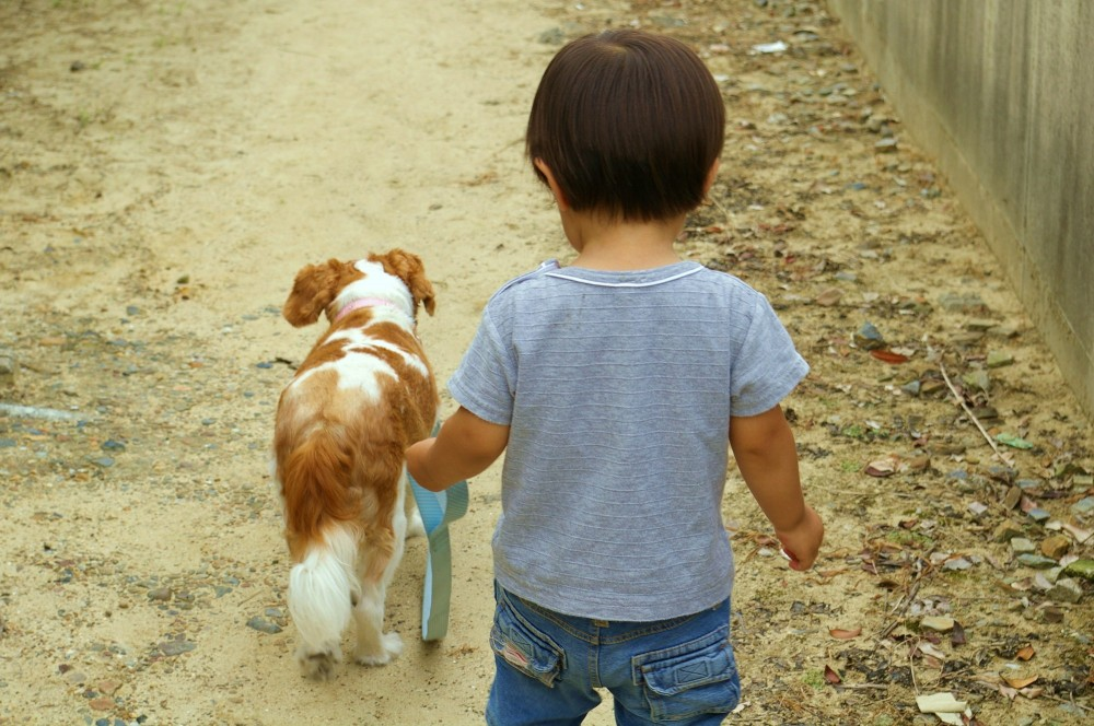 子どもと犬。見ているだけでかわいくて癒されますね