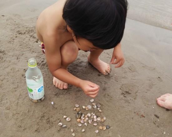 生きたヤドカリもたくさん混じっていたので、海にリリースしました。