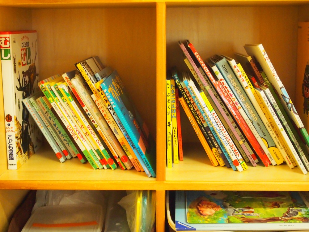 虫好きの子、お話好きな子など絵本の種類もたくさん。