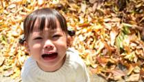 保育士に聞く【魔の2歳児】イヤイヤ期にどう対応している?変化球の声がけがうまくいく!?