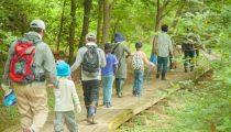【5歳〜7歳】初めての「サマーキャンプ」体験談でわかる選び方のポイントやメリット