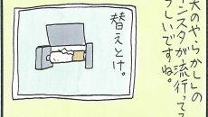 【くらたま連載・第159回】旦那へのイライラが止まらないっ! 今週の「イラダン」!