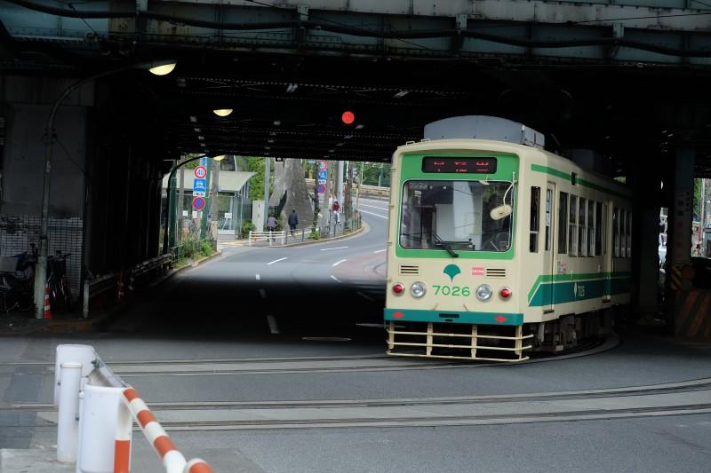 乗るのもいいけど、走っている電車をみるもの子どもは喜ぶかも。