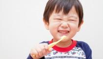 子どもに「健康な歯」を与えたいママ、必見!! 95%が虫歯ゼロの小学校