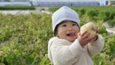子どもも大好きなジャガイモ。
