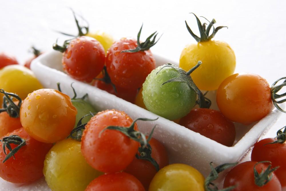 彩のいいプチトマトはお弁当を華やかに