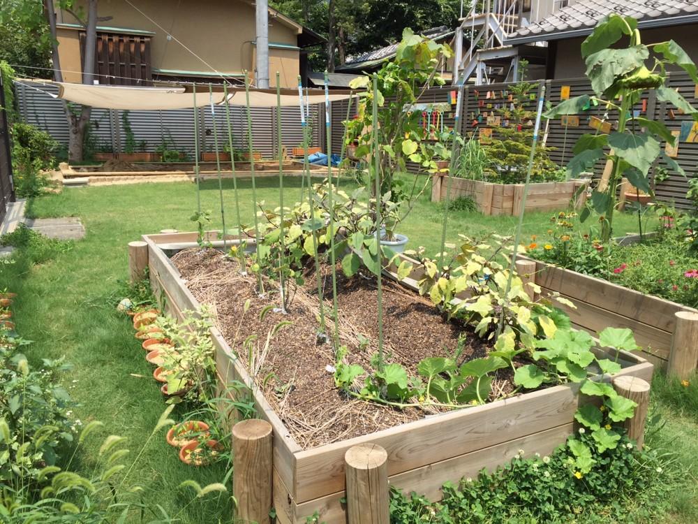 六本木園のコミュニティガーデン「まちのガーデン」1