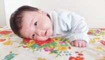 【小児科医と先輩ママに聞く!】突発性発疹は2回かかる!? 1回目との違いとは?